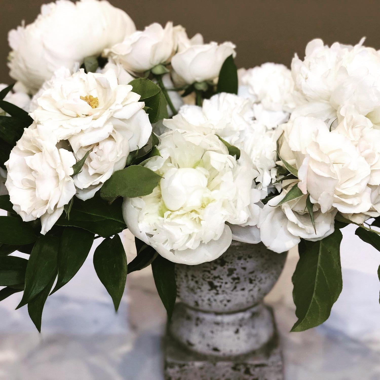 Cream & White Florals in Vase