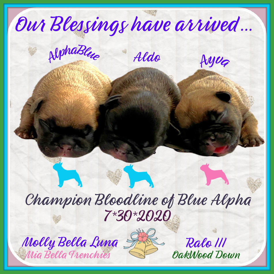 Our First Blessing