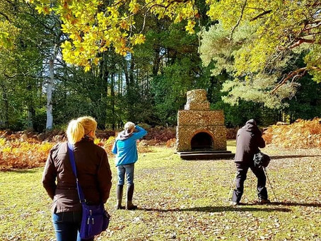 Up and coming guided walks in the new forest.