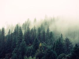 ☆農曆七月會不安~別怕別怕,手作精油香磚與噴霧,讓你安心過鬼月☆8月1日(四)下午台北班