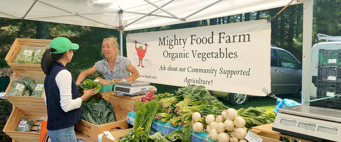Vermont Organic Farmers Market