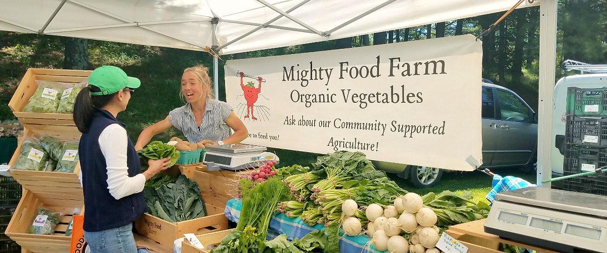 Dorset Vermont Farmers Market