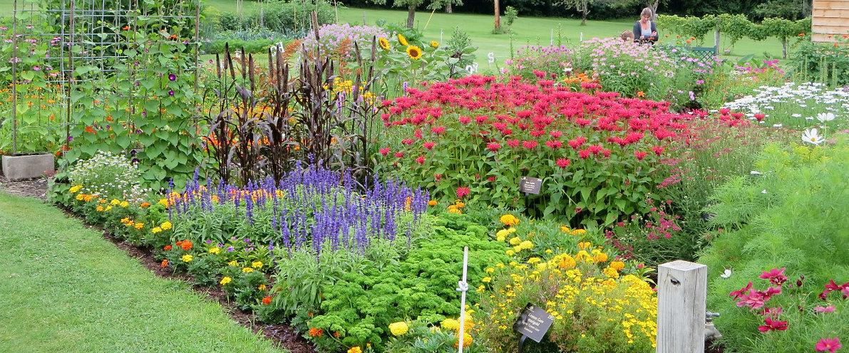 meditative garden emotional wellness