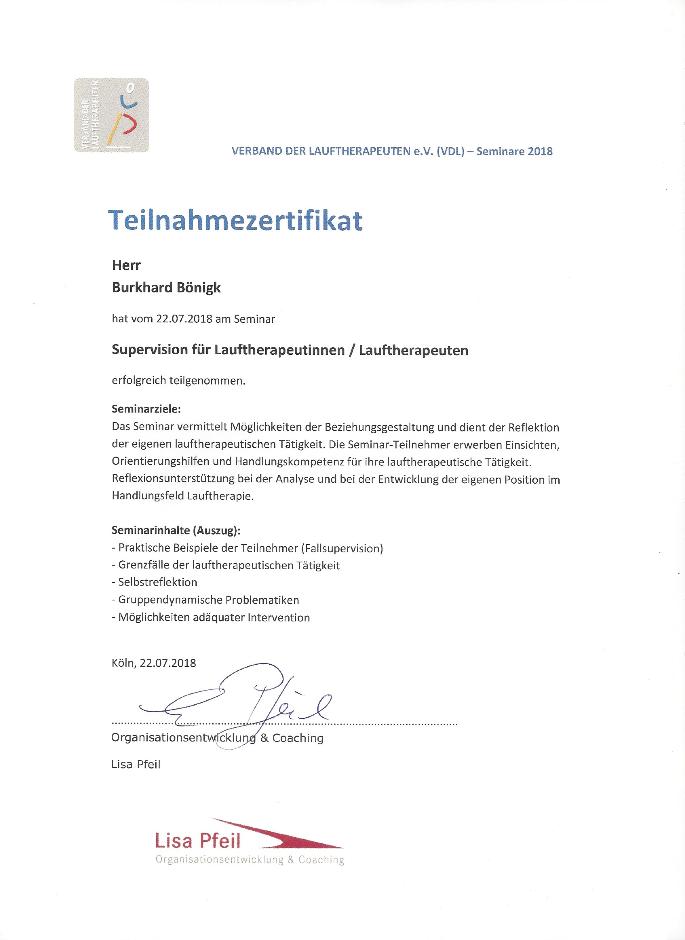 Supervision für Lauftherapeuten - Zertifikat Laufinstinkt+®