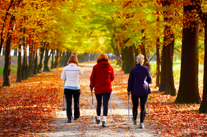 Laufinstinkt - Nordic Walking Kurs 8