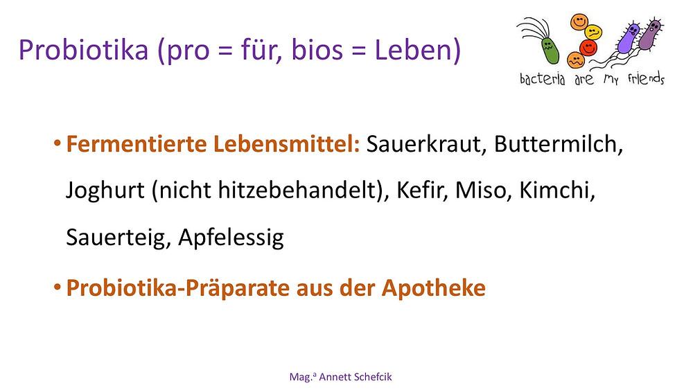 Annett Schefcik - ADIPOSITAS : DARMBAKTERIEN | Ernährungstraining Laufinstinkt.de - Bild 16