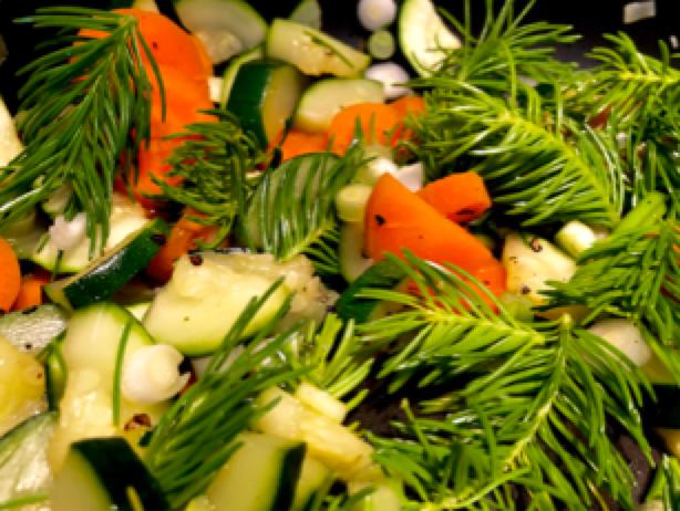 Laufinstinkt.de Frische Nadelbaumtriebe kulinarisch - Bild 3