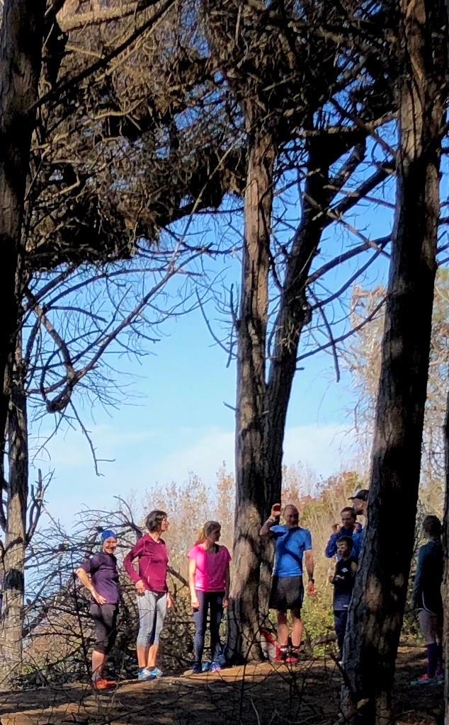 Laufinstinkt+ Trainingslager Toscana 2018 Bild 20