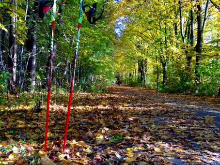 VERGLEICH NORDIC WALKING - LAUFEN | Lauftherapie, Laufkurse, Lauftraining