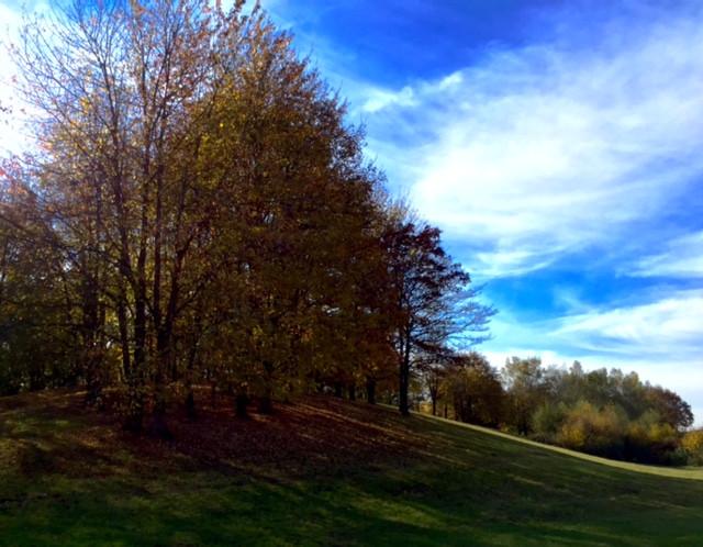 Laufinstinkt+ Oktober-Impressionen '15 B