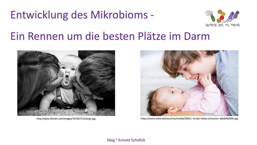 Annett Schefcik - ADIPOSITAS : DARMBAKTERIEN | Ernährungstraining Laufinstinkt.de - Bild 6