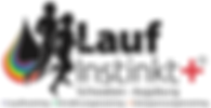 "Laufinstinkt+® Augsburg Walking + Ausdauer Kurs ""BAK60"""