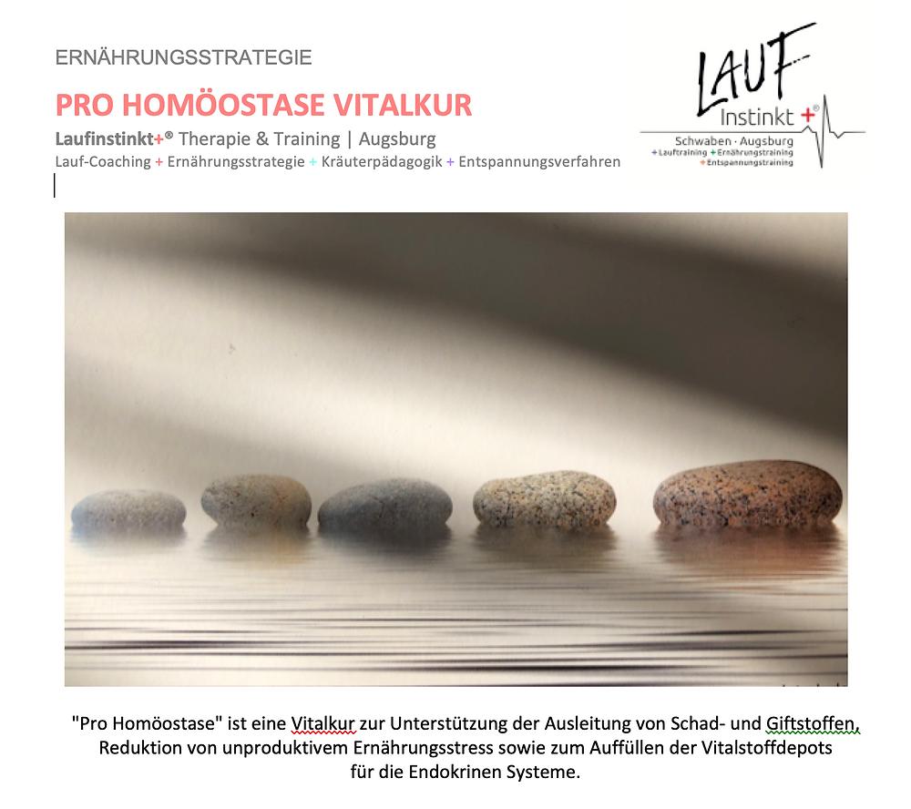 Laufinstinkt.de - Ernährungstraining - Pro Homöostase Vitalkur - Bild 1