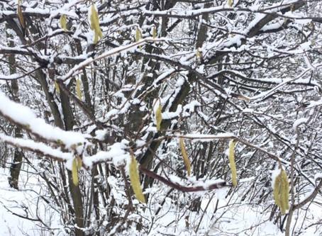 Februar-Skizzen 2016 aus Minas Tirith   Lauftherapie, Laufkurse, Lauftraining