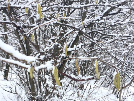 Februar-Skizzen 2016 aus Minas Tirith | Lauftherapie, Laufkurse, Lauftraining
