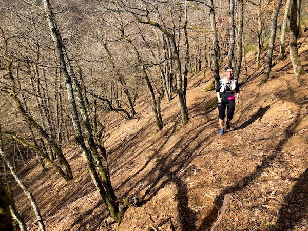 Laufinstinkt.de - Lauftraining - Pfälzer Bergland Trail 2019 - Bild 3