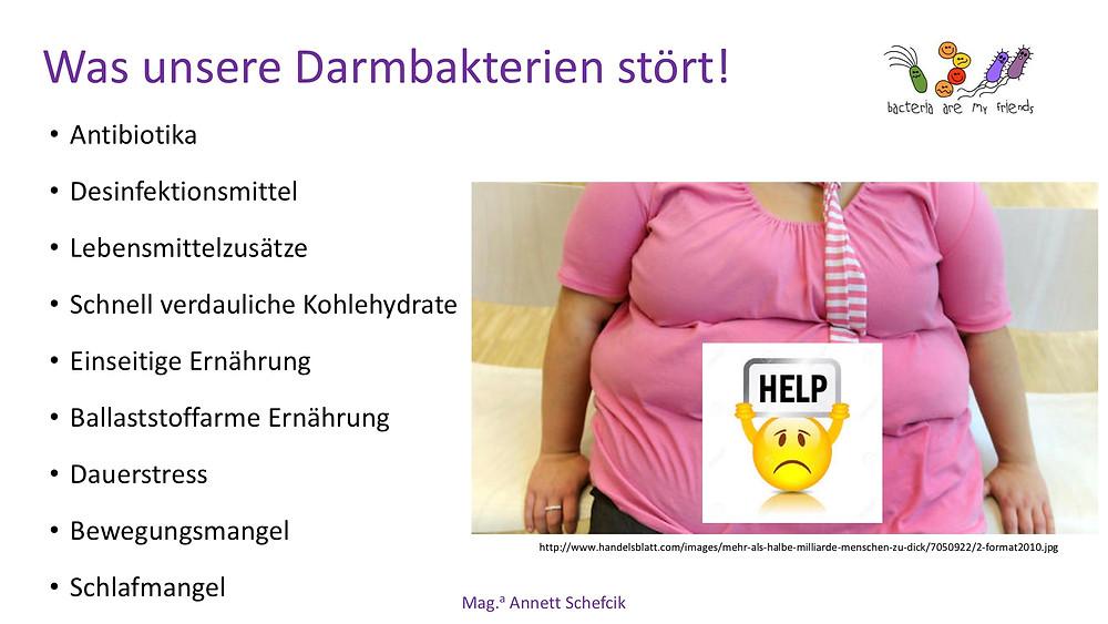 Annett Schefcik - ADIPOSITAS : DARMBAKTERIEN | Ernährungstraining Laufinstinkt.de - Bild 11