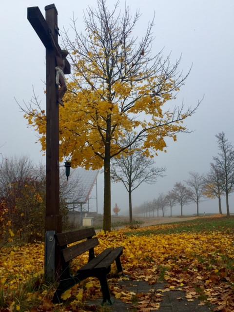 Laufinstinkt+ Sinnlicher November '15 D