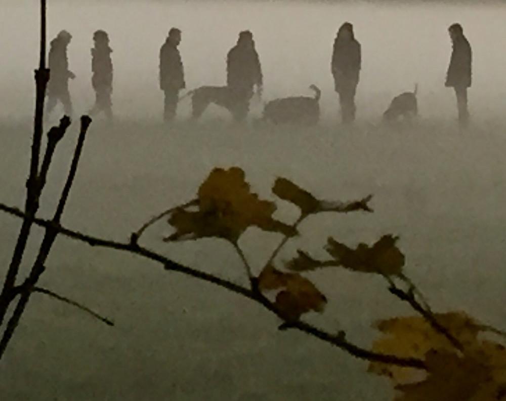 Laufinstinkt+ Sinnlilicher November '15 I