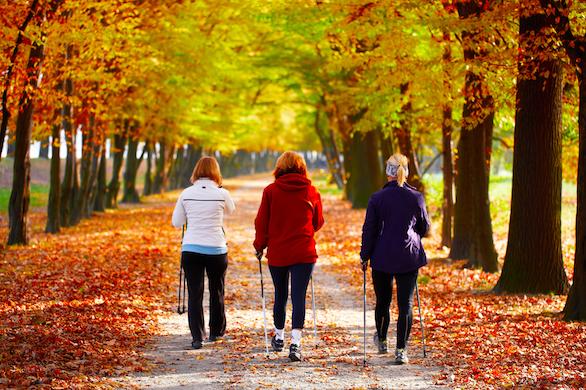 Gelenkschonendes Nordic Walking | Laufinstinkt+®