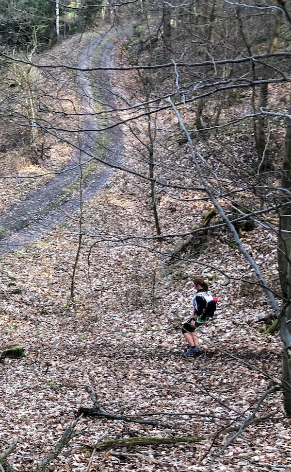 Laufinstinkt.de - Lauftraining - Pfälzer Bergland Trail 2019 - Bild 6