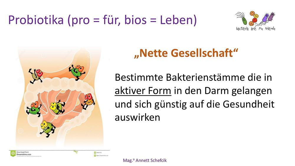 Annett Schefcik - ADIPOSITAS : DARMBAKTERIEN | Ernährungstraining Laufinstinkt.de - Bild 15