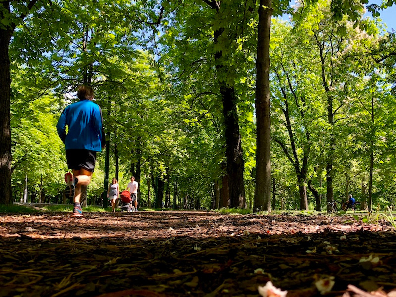 Laufinstinkt.de  ÜBER DAS LAUFEN | Lauftherapie - Bild 2
