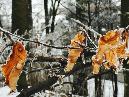 "Januar-Skizzen '16 aus ""Mittelerde"" | Lauftherapie, Laufkurse, Lauftraining"
