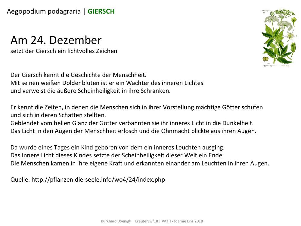 Laufinstinkt.de Referat Giersch - Bild 6