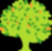 arbre-cocon-d-eveil-sans-racine.png