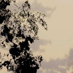 Screen Shot 2021-04-18 at 5.47.08 PM.png