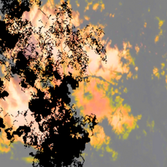 Screen Shot 2021-04-18 at 5.45.18 PM.png