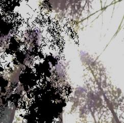 Screen Shot 2021-04-18 at 5.48.48 PM.png