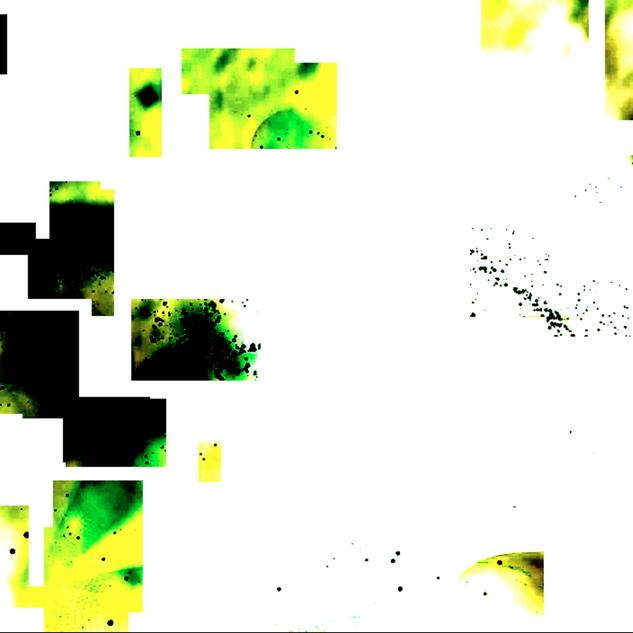 Screen Shot 2021-01-05 at 8.13.11 PM.png