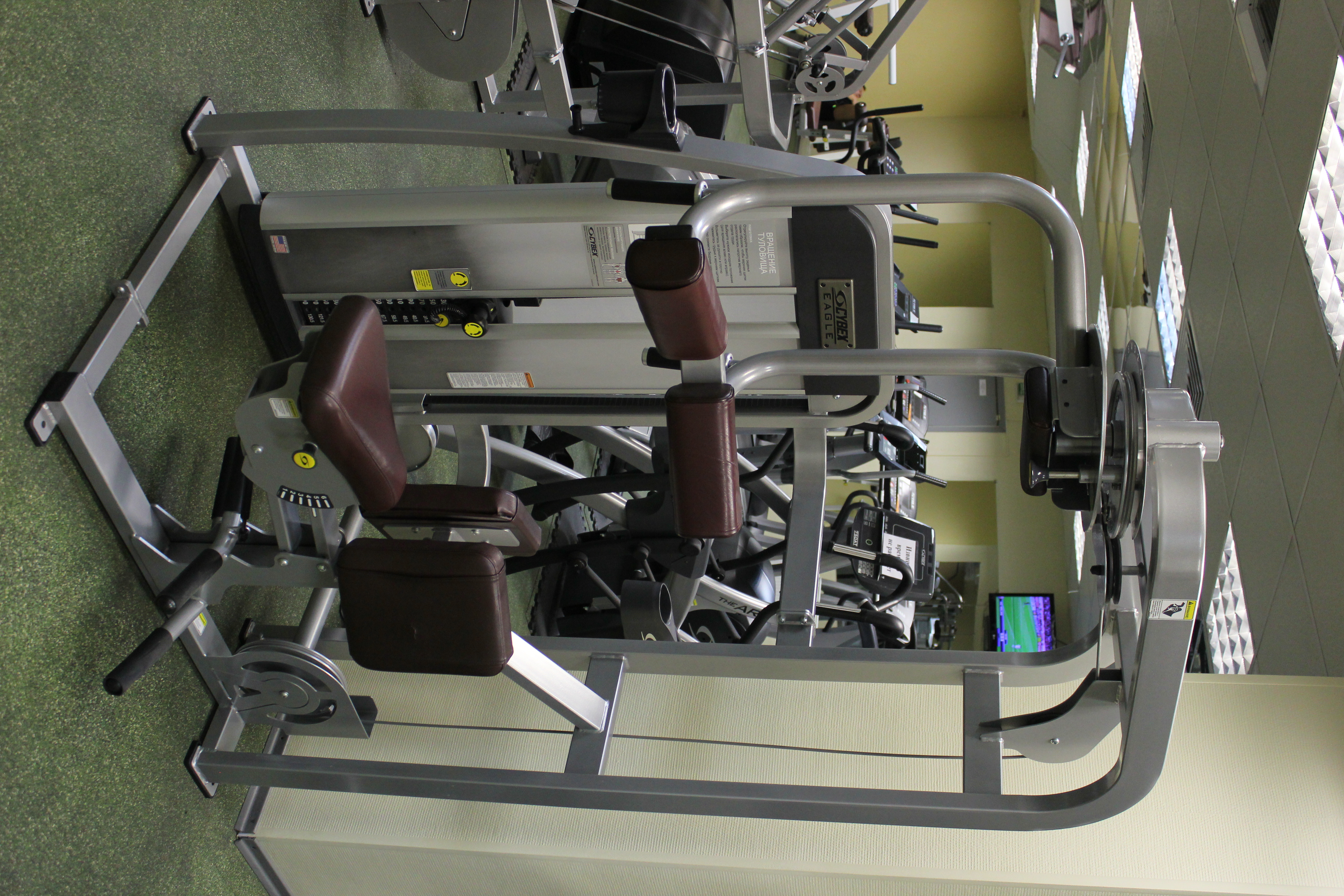 упражнения тренажерный зал девушки