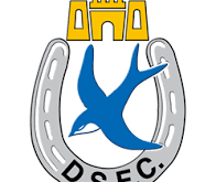 Match Preview: Dungannon Swifts (h)