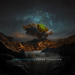 Nicholas Gunn - Sound Condition
