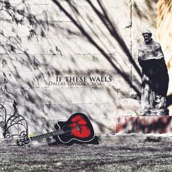 Dallas David Ochoa - If These Walls
