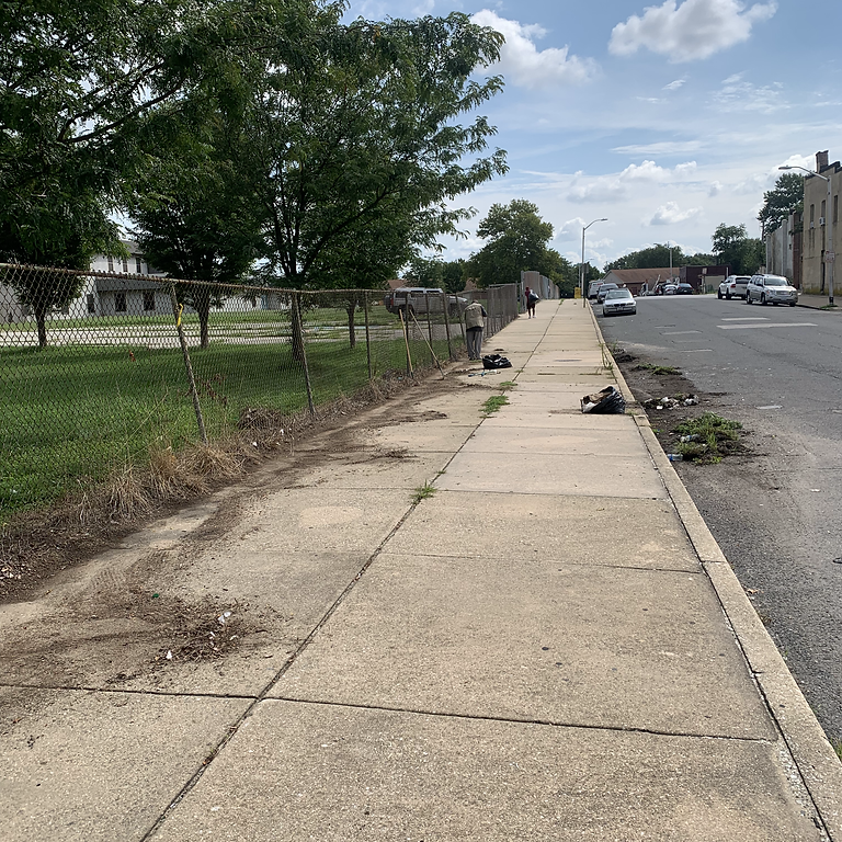 West Side Community Clean-up