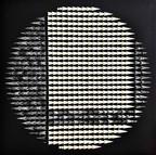 """🔴53 / DANTE (76cmx76cm-30""""x30"""") 2018"""