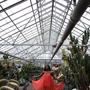 Belgian Nursery Greenhouse Session | Kitchener, Ontario Photographer