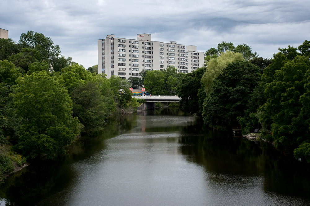 view of downtown guelph on the speed river