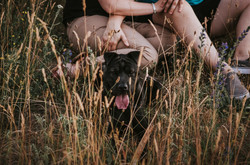 gay-engagement-photos-with-dog