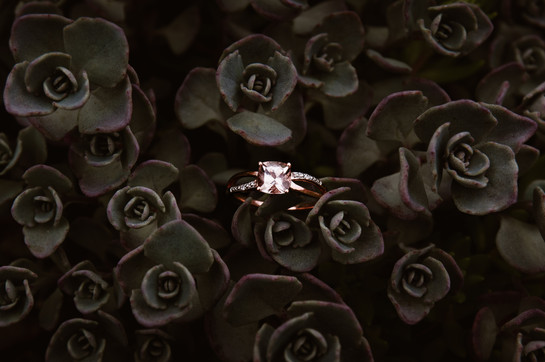beautiful rose gold engagement ring in succulents