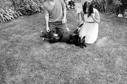 guelph-family-photography-dog