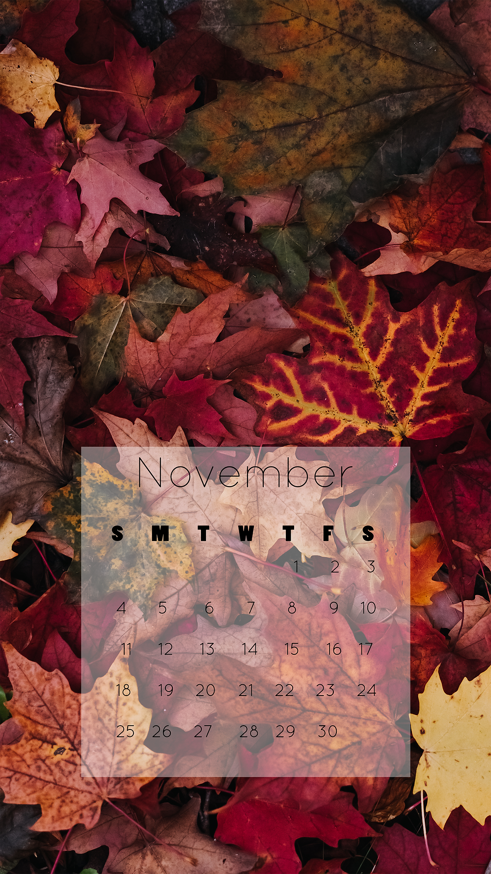 beautiful fall leaves iphone wallpaper November 2018 calendar free download