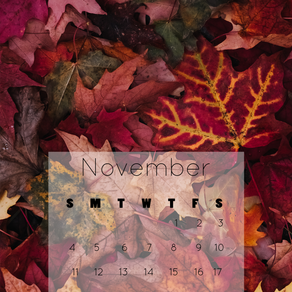 November 2018 Calendar Background | Free iPhone & Desktop Wallpaper Download