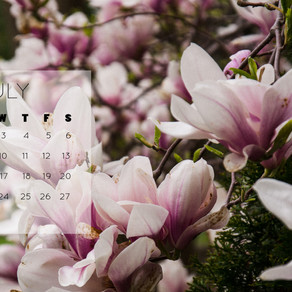 July 2019 Background | Free iPhone & Desktop Wallpaper Download