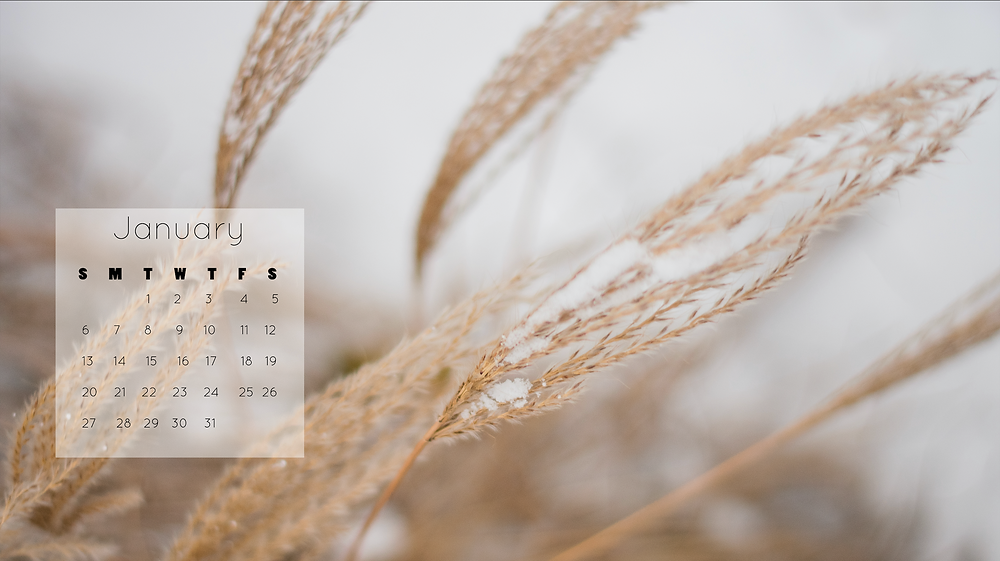 January 2019 Free Desktop Wallpaper Download