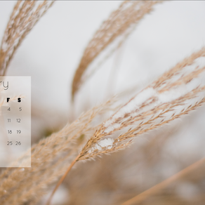 January 2019 Background | Free iPhone & Desktop Wallpaper Download